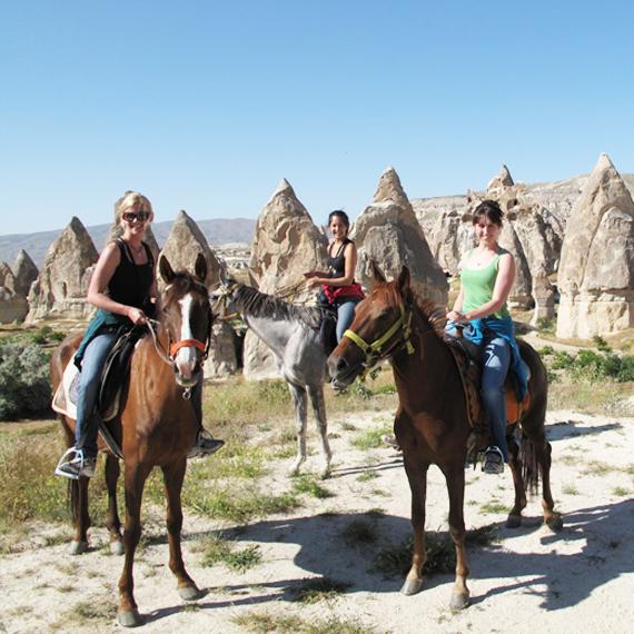 Horse Tours